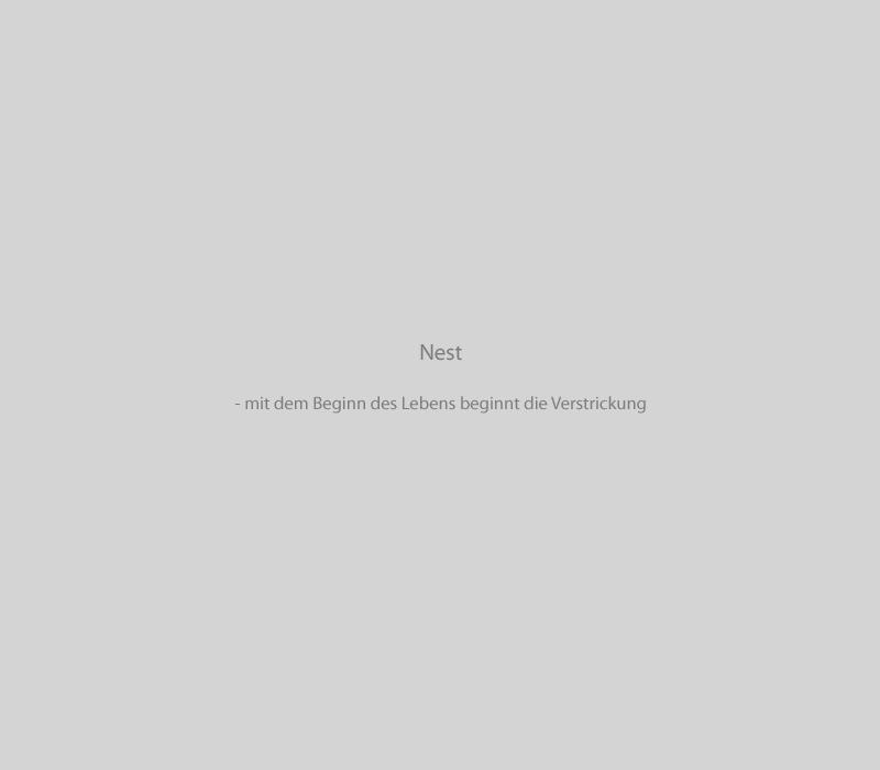 Slider_Texte_Nest