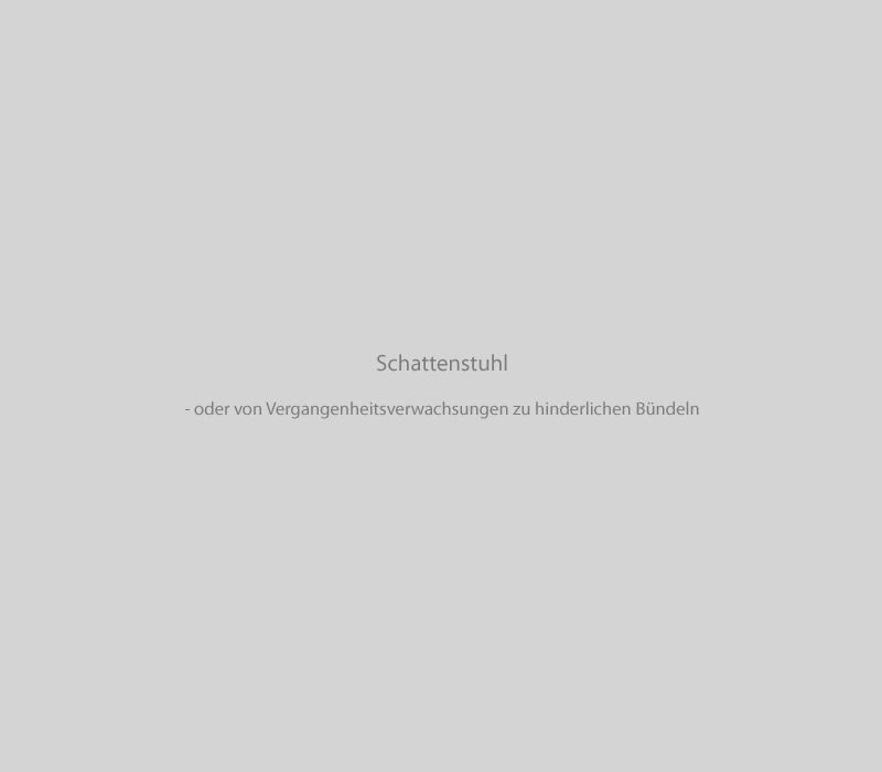 Slider_Texte_Schattenstuhl