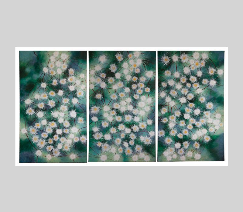 Slider_triptych_lotuswirbel